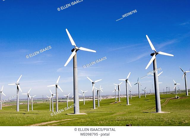 Many windmills in a field in Livermore, California
