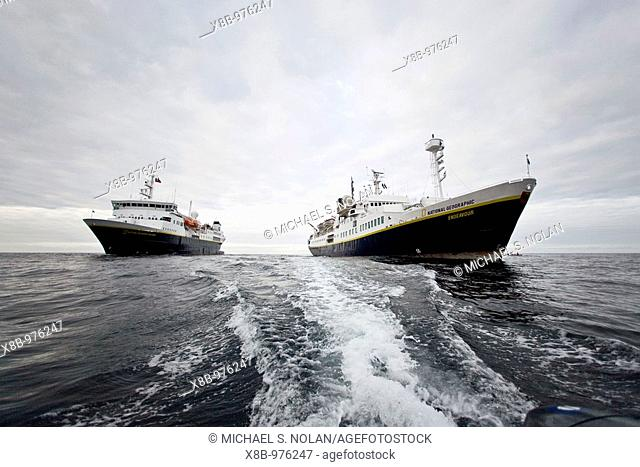 The Lindblad Expedition ships National Geographic Explorer and National Geographic Endeavour operating in and around the Antarctic peninsula in Antarctica...
