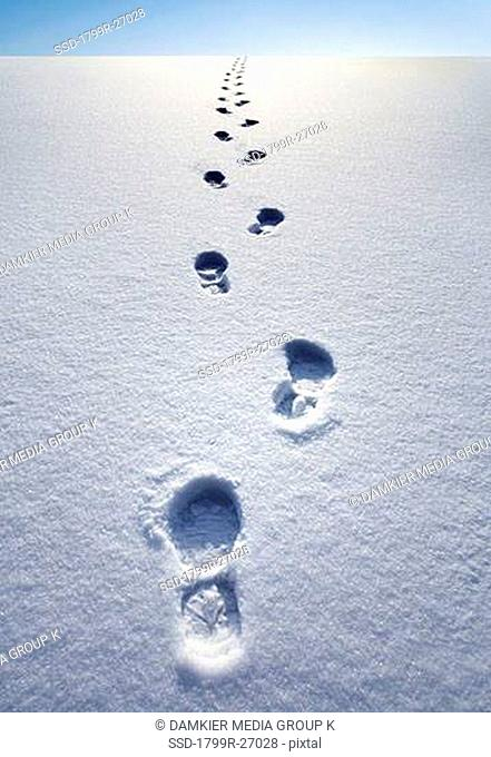 Close-up of footprints on snow, Iceland