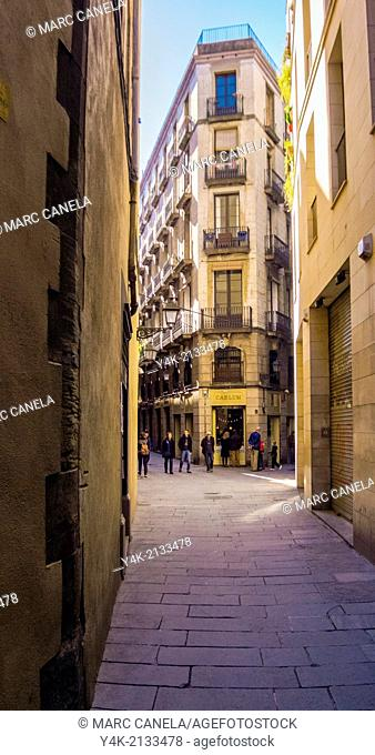 Europe, Spain, Barcelona, carrer de la palla, palla street