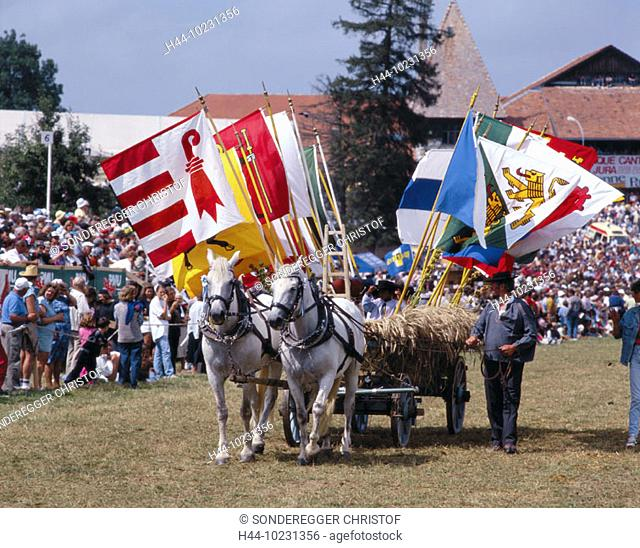 10231356, tradition, folklore, horses, party, fête, flags, banners, canton Jura, Marche Concours, no model rel, horse party, S