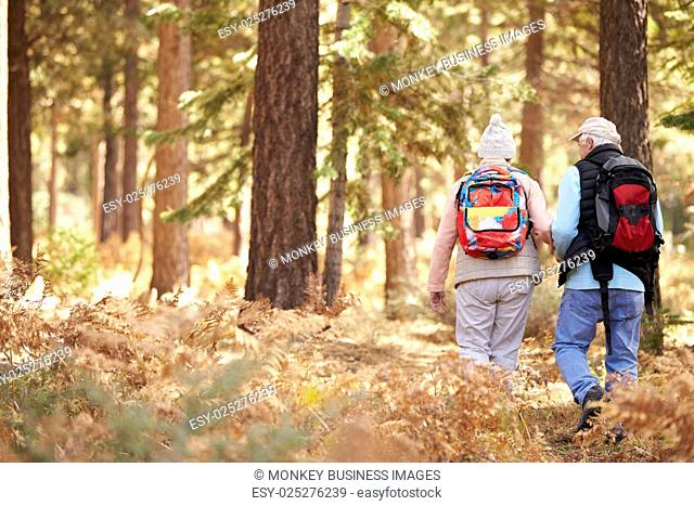 Senior couple hiking in a forest, back view, California, USA