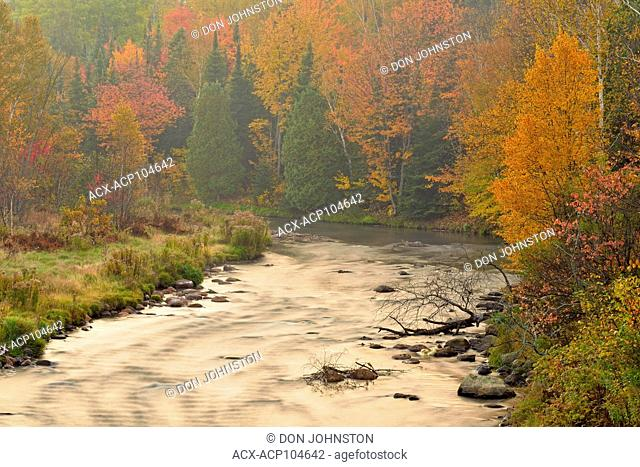 Junction Creek in autumn, Whitefish First Nation, Ontario, Canada