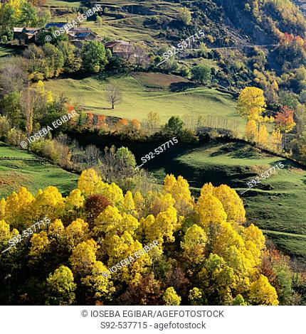 Fonchanina. Huesca. Spain