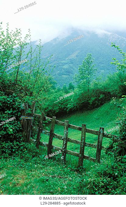 Portilla (typical fence), Redes Natural Park and Biosphere Reserve. Asturias. Spain