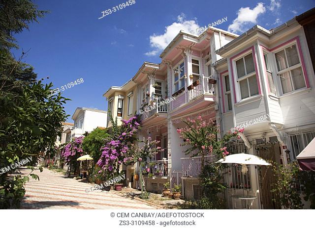 Traditional wooden house covered with flowers in Heybeliada-Halki, Prince Islands, Marmara Sea, Istanbul, Turkey, Europe