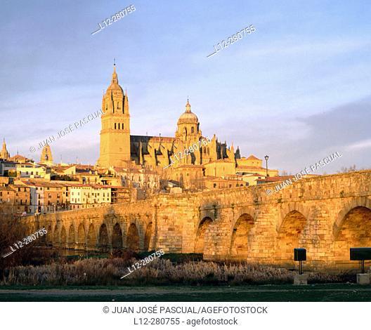 Roman bridge and Gothic cathedral. Salamanca. Spain