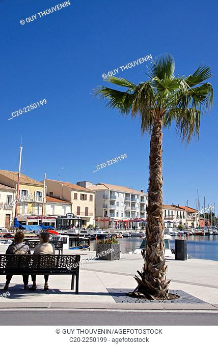 Women on a bench near a palm tree, on the quay of Meze harbor, Herault 34, Languedoc Roussillon region, France