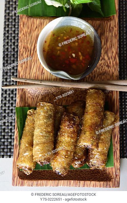 Vietnamese dish Nem crispy rolls ,Ho Chi Minh City,Vietnam,South East Asia