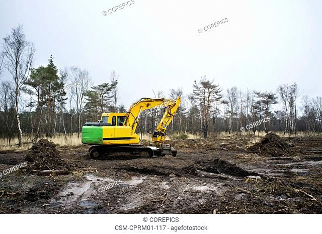 Digger in a by a forest fire destructed terrain in the Kalmthoudse Heide, a heath nature reserve park in Belgium