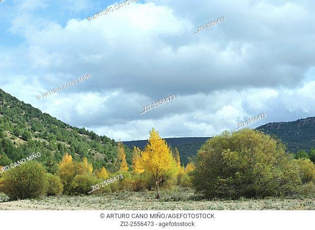 Valley of River Ablanquejo, Alto Tajo Natural Park. Huertahernando, Guadalajara, Spain