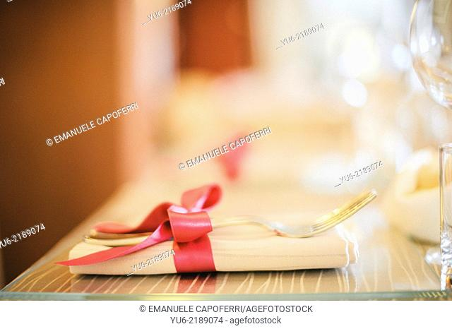 Fork and napkin with ribbon