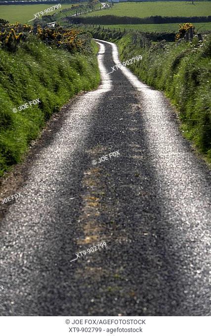 small narrow single track road leading off into countryside in county sligo republic of ireland