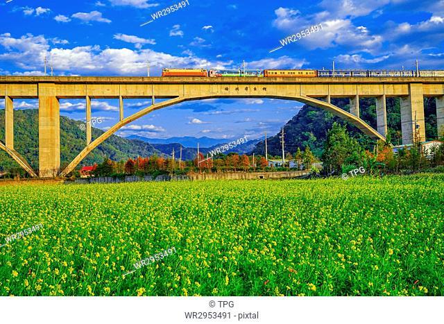 Taiwan railway bridge
