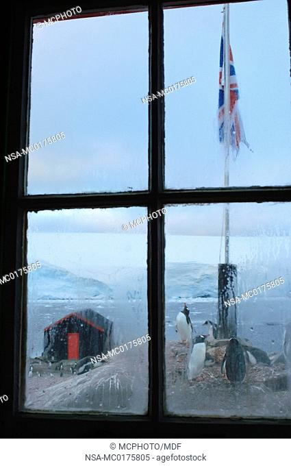 Looking out a window at Port Lockroy Antarctic