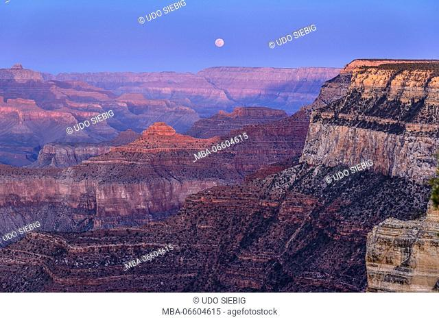 The USA, Arizona, Grand canyon National Park, South Rim, Powell Point, Evening mood, moonrise