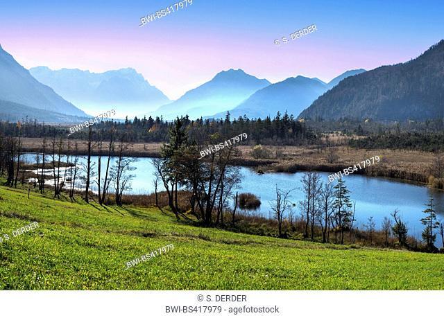 Pfruehlmoos, At the seven wells, near Eschenlohe, in the background the Allgaeu Alps, Germany, Bavaria, Oberbayern, Upper Bavaria, Eschenlohe