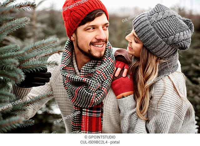 Young couple selecting christmas tree from forest