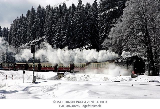 A steam train engine of the Harz narrow-gauge railway services travels through a wintery öandscape in the Harz region near Wernigerode, Germany, 13 March 2013
