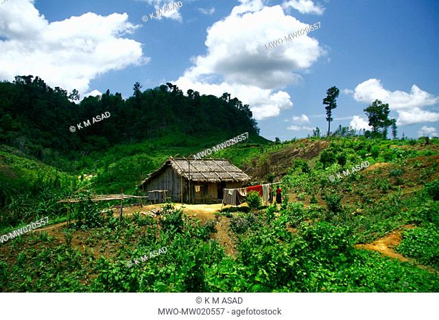 A tribal home in a village in Khagrachari, one of the hill districts under Chittagong division, in Bangladesh Locally known as 'Chengmi'