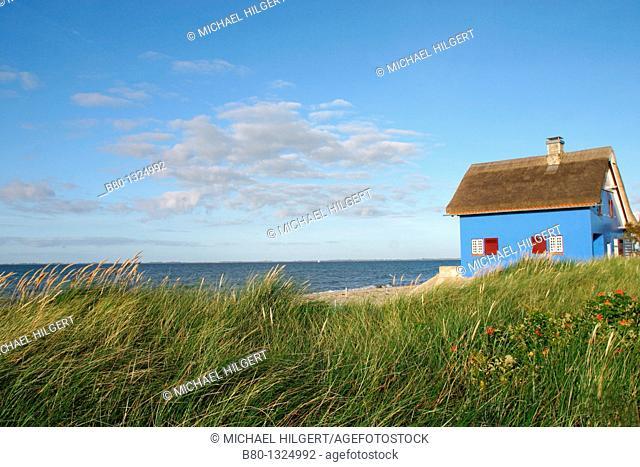 Beach, dune, summer cottage, Graswarder, Heiligenhafen, the Baltic Sea, Schleswig-Holstein, Germany, Europe