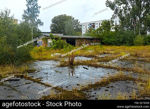 Berlin, Germany. Former and Abandoned DDR / DGR Factory, now being overtken by nature and graffiti artists