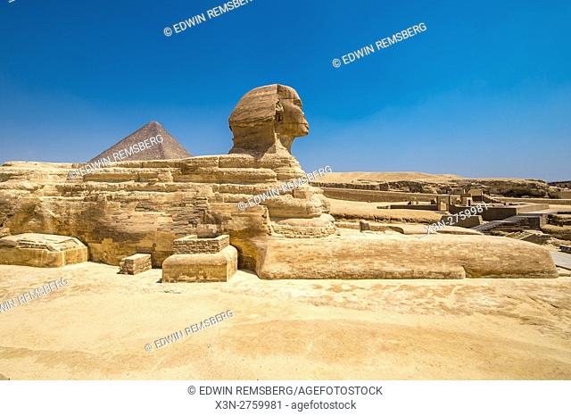 Cairo, Egypt the Great Sphinx of Giza standing tall with the Great Pyramids of Giza in the background. This particular one is The Pyramid of Khufu