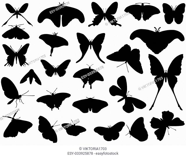 Collection of silhouettes of different species of butterflies