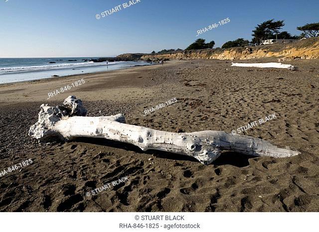 Driftwood on beach, Moonstone Beach Park, Cambria, San Luis Obispo county, California, United States of America, North America