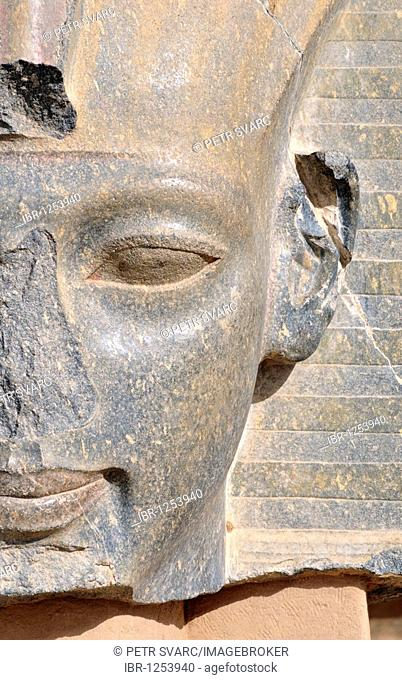 Granite statue at Ramesseum, Mortuary Temple of Pharaoh Ramesses or Ramses II, Theban Necropolis, West Bank of Luxor, Egypt, North Africa