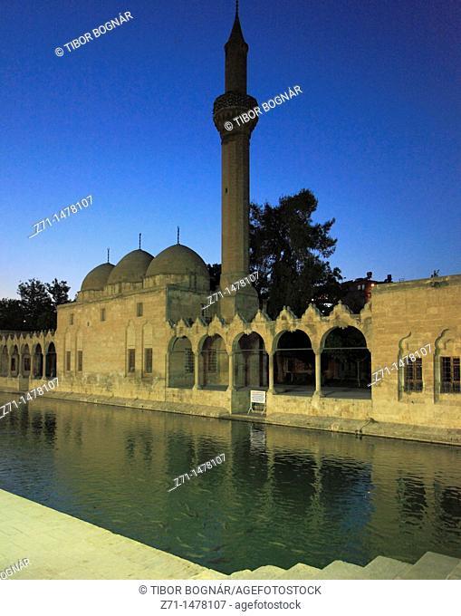 Turkey, Sanliurfa, Gölbasi, Balikli Göl Pool, Rizvaniye Mosque, sacred carp