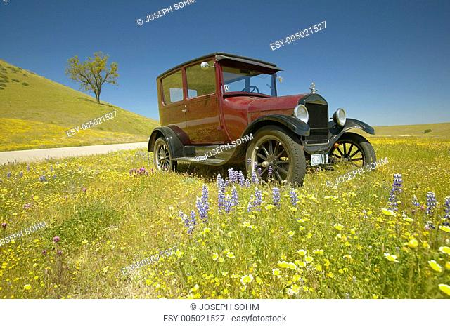 A maroon Model T driving down a scenic road surrounded by spring flowers off of Route 58, Shell Road, CA