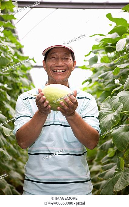 Elderly farmer holding a melon in greenhouse, smiling
