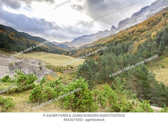 Zuriza Valley, Huesca, Spain