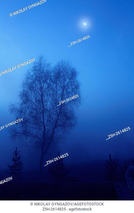 Russian Federation. Foggy morning in blue tones