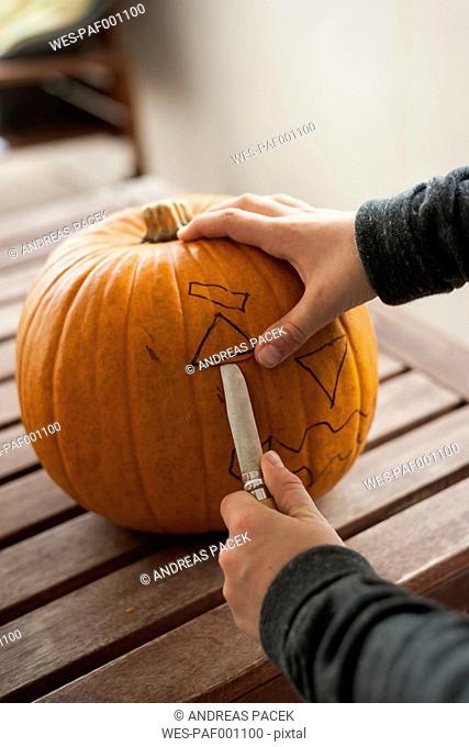 Boy's hands preparing a pumpkin for Halloween lantern