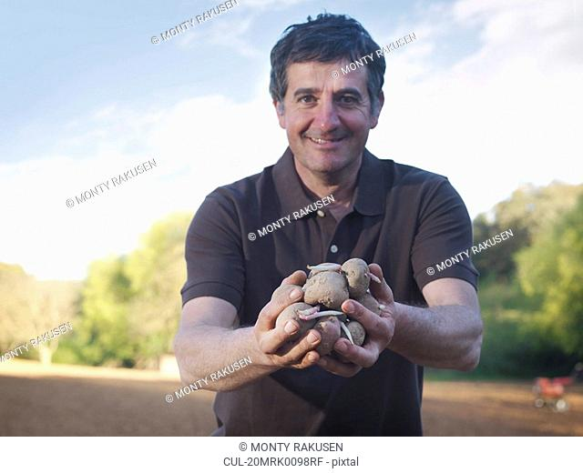 Man holding potatoes to be sowed