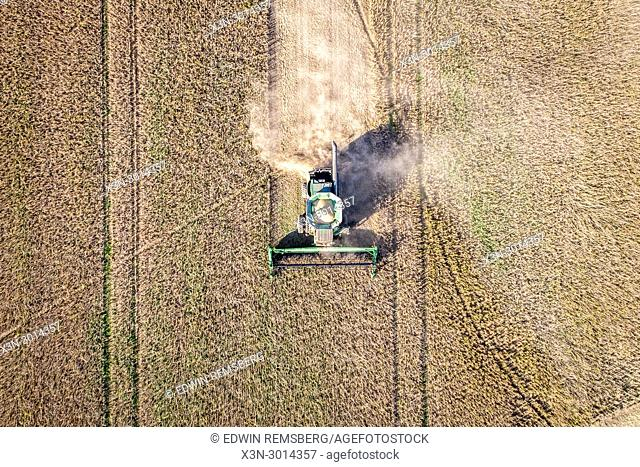 Aerial view looking directly down at a combine harvester driving through rows of soybeans and kicking up dust, Maryland, USA