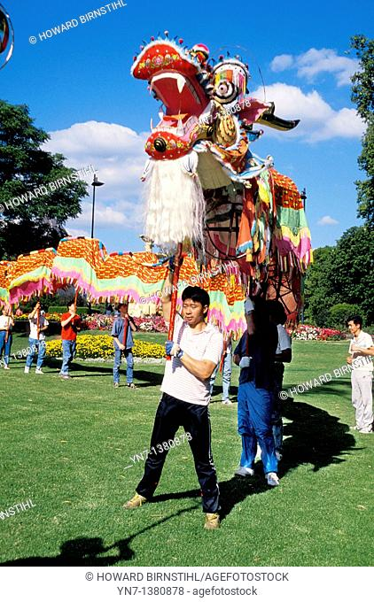 Young men practice their work with the Chinese dragon in the park in Melbourne Australia for Chinese New Year