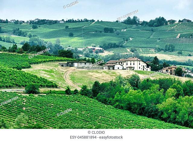 Rural landscape at summertime along the road from Vicobarone (Piacenza, Emilia Romagna, Italy) to Santa Maria della Versa (Pavia, Lombardy)
