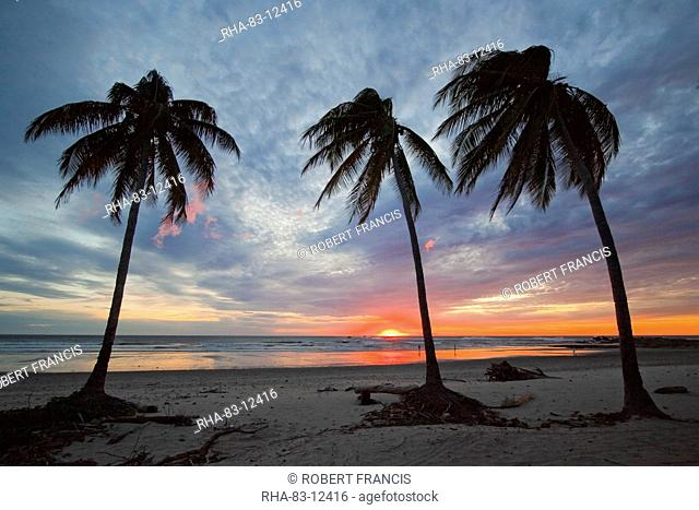 Sunset and palm trees on Playa Guiones beach, Nosara, Nicoya Peninsula, Guanacaste Province, Costa Rica, Central America
