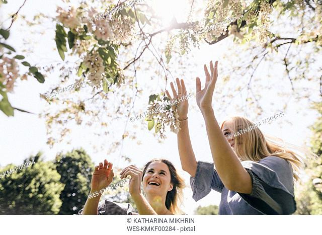 Two happy young women in a park at blossoming tree