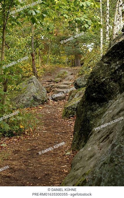 Devil's Wall path Teufelsmauerstieg, Harz District, Harz, Saxony-Anhalt, Germany / Teufelsmauerstieg, Landkreis Harz, Harz, Sachsen-Anhalt, Deutschland