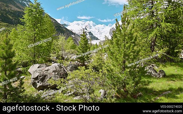 Summer landscape at Morteratsch Glacier, Grisons, Switzerland