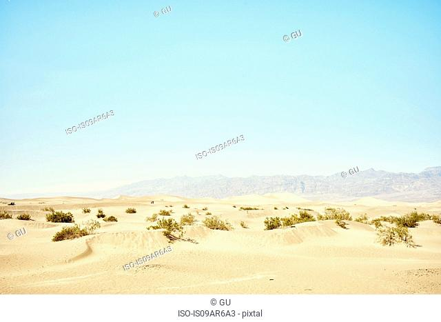 View of Mesquite Dunes, Death Valley, California, USA