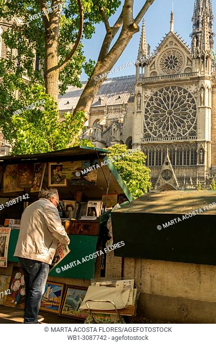 Traditional bookseller(bouquiniste) in front of Notre Dame de Paris in a sunny day. Paris, France