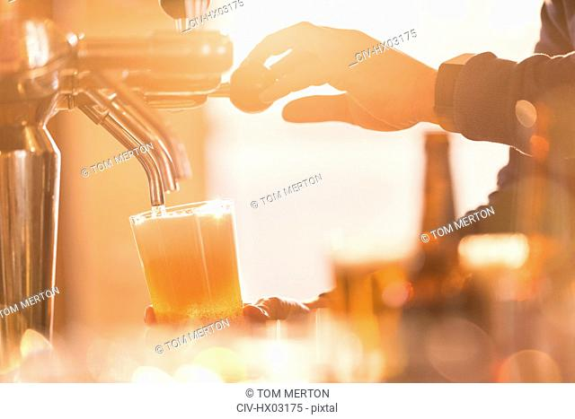 Close up male bartender pouring pint of beer from beer tap behind bar