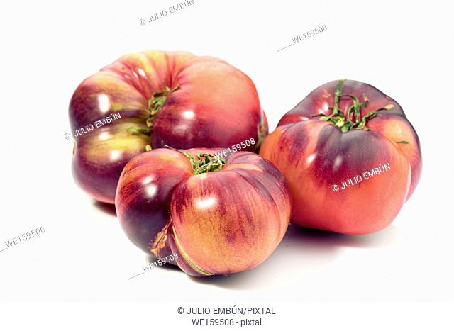 group of tomatoes isolated on white