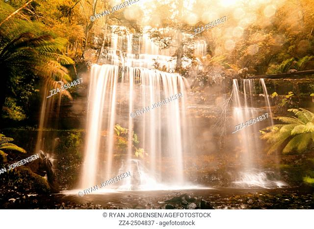 The fall of autumn runs in a cascade of fresh cold water from a lovely stream in Mt Field national park. Russell Falls, Tasmania, Australia