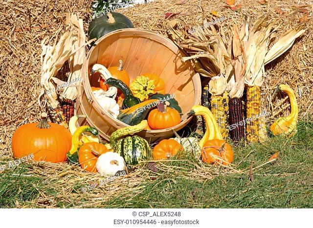 Thanksgiving Day spirit